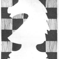 História do Xadrez Santamariense – Torneio de Xadrez Para Novatos - 1996